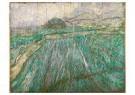 Vincent van Gogh (1853-1890)  -  Wheat Field in Rain, 1889 - Postkaarten-set -  A111362-1