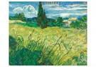 Vincent van Gogh (1853-1890)  -  Green Field, 1889 - Postkaarten-set -  A117246-1
