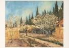 Vincent van Gogh (1853-1890)  -  Bloeiende boomgaard omgeven door cypressen, 1888 - Postkaarten-set -  A4123-1