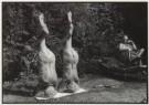 Rolf Neeser (1959)  -  Kopfstand - Postkaarten-set -  B0622-1