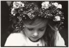 Alexandra Stonehill  -  Mille fleurs. - Postkaarten-set -  B1778-1