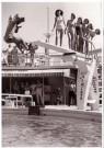 Spaarnestad Fotoarchief,  -  Fotograaf valt van duikplank - Postkaarten-set -  B3249-1
