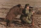 Sandor Szabo  -  Wild-Boar hunting - Postkaarten-set -  C5319-1