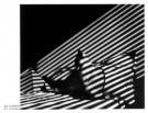 Gijs Woldhek  -  Tokkel sfinx - Postkaarten-set -  PS425-1