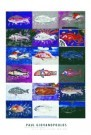 Paul Giovanopoulos (1939)  -  Giovanopoulos/Fish'A'/62*91 - Posters-set -  PS711-1